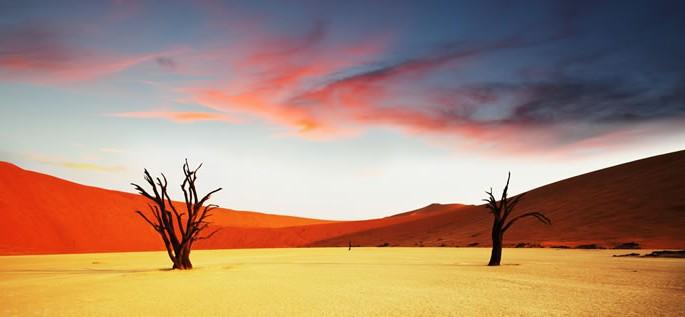 Learn about the Khoekhoe (Nama) language